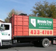 Nevada Tree Service